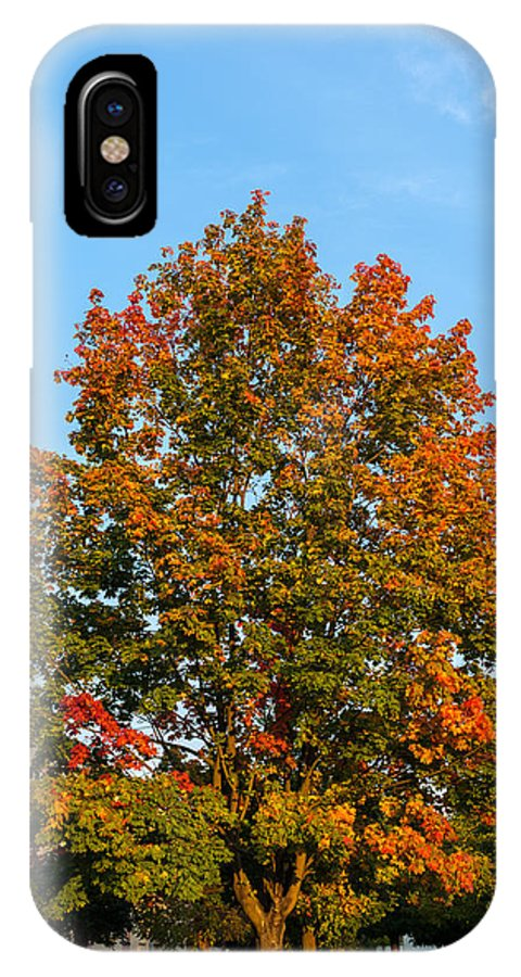 Colours Of Autumn IPhone X Case featuring the photograph Colours Of Autumn by Tgchan