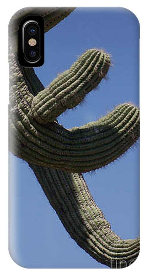 Saguaro IPhone X Case featuring the photograph Come Hither by Kathy McClure
