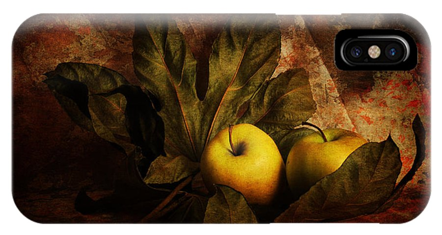 Apples IPhone X Case featuring the photograph Comfy Apples by Randi Grace Nilsberg