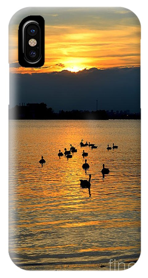 Silhouette IPhone X Case featuring the photograph Coming Home by Janet Davaros