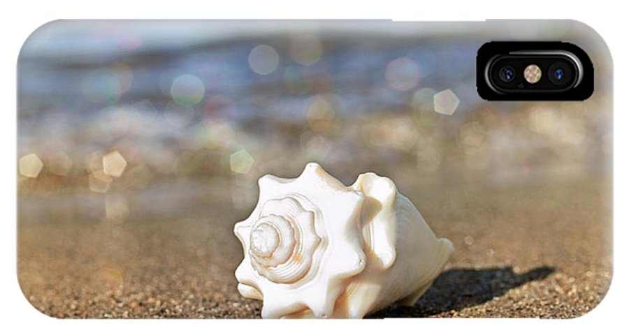 Sea Shell IPhone X Case featuring the photograph Conch by Charline Xia