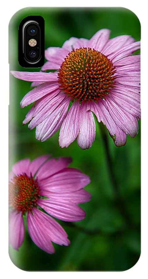 Cone Flowers IPhone X Case featuring the photograph Cone Flowers by Louise St Romain