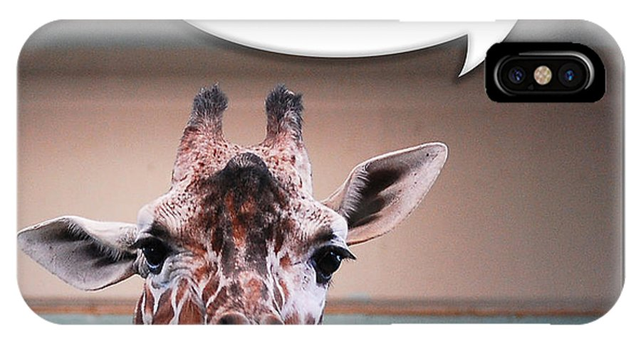 Giraffe IPhone X Case featuring the photograph Confused Giraffe by Robert Schwarztrauber