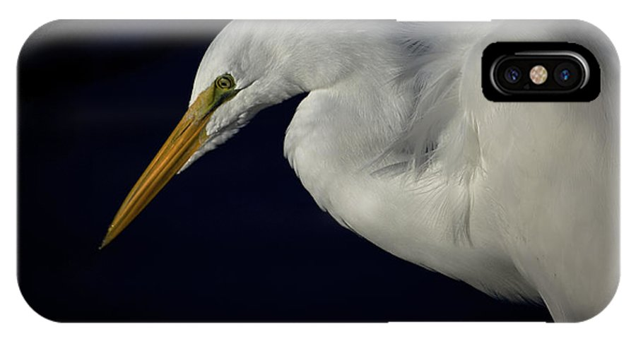 Egret IPhone X / XS Case featuring the photograph Contemplation by Patrick Anderson