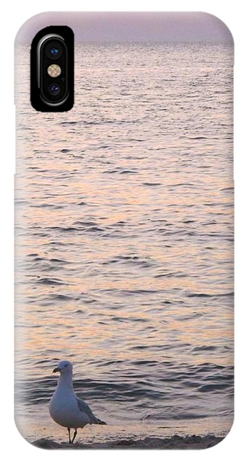 Beautiful Lake Michigan IPhone X Case featuring the photograph Contemplative Seagull by Sylvia Herrington
