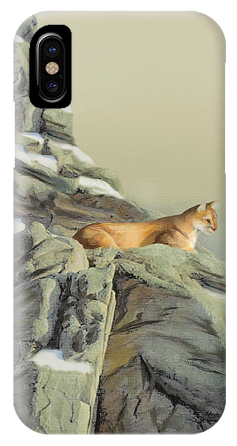 Cougar IPhone Case featuring the painting Cougar Perch by Jane Girardot
