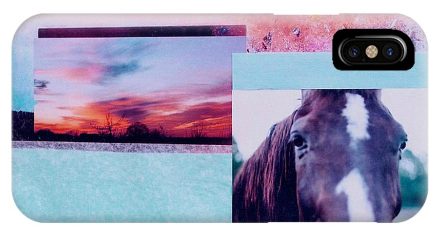 Horse IPhone X Case featuring the photograph Country Collage 4 by Mary Ann Leitch