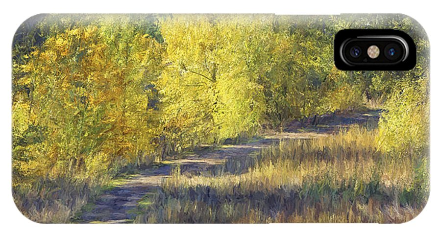 Country Lane IPhone X Case featuring the photograph Country Lane Digital Oil Painting by Sharon Talson