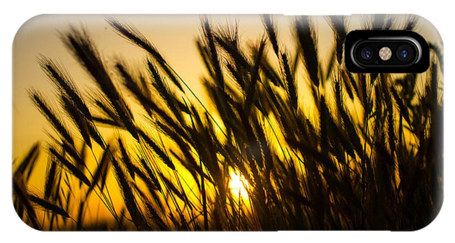 Farm IPhone X Case featuring the photograph Country Sunset by Richard Cheski