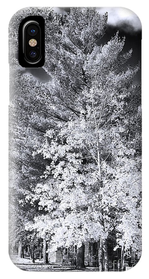 Country Trees IPhone X Case featuring the photograph Country Trees by John Rizzuto