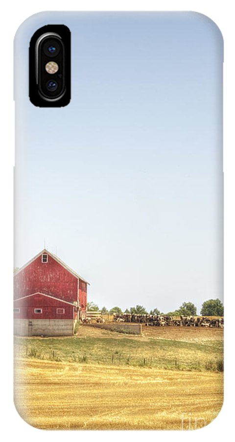 Field; Pasture; Farm; Grasses; Wheat; Plowed; Red; Barn; Farm; Outside; Outdoors; Day; Nature; Sky; Rural; Land; Lines; Red; Peeling; Wood; Worn; Weathered; Old; Vintage; Cows; Animals; Dairy; Meat IPhone X Case featuring the photograph Cow Pasture by Margie Hurwich