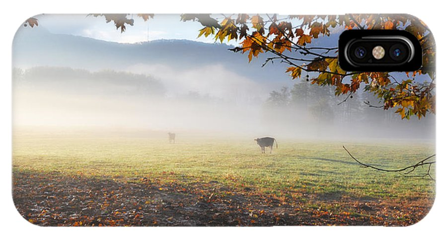 Cows IPhone X Case featuring the photograph Cows In The Fog by Mats Silvan