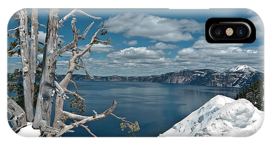 Crater Lake IPhone X Case featuring the photograph Crater Lake Tree by Greg Nyquist
