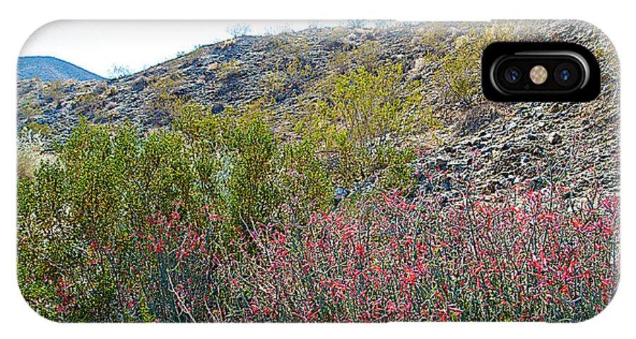 Creosote And Chuparosa On Henderson Trail In Santa Rosa-san Jacinto Nmon IPhone X Case featuring the photograph Creosote And Chuparosa On Henderson Trail In Santa Rosa-san Jacinto Nmon-ca by Ruth Hager