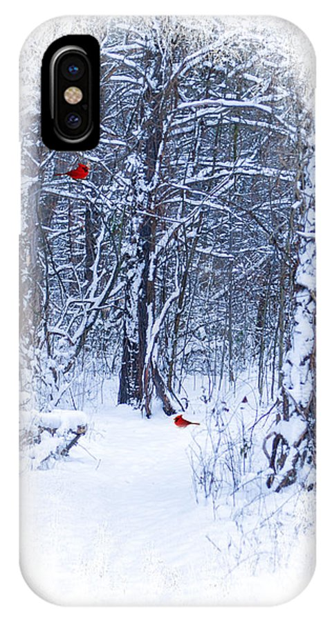 Winter Scene. Snow Landscape. Christmas Greeting Card. New Years Greeting Card. Woods. Path. Trees. Forest. Red Cardinals. Winter Landscape. Nature. Wildlife. Photography. Print. Canvas. Poster. Fine Art. Digital Art. IPhone X Case featuring the photograph Crisp by Mary Timman