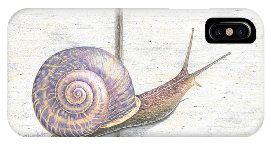 Snail IPhone X Case featuring the drawing Crossing The Finish Line by Diana Hrabosky