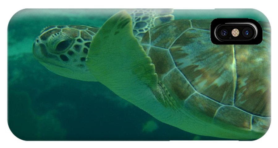Sea Turtle IPhone X Case featuring the photograph Cruisin' by Kimberly Perry