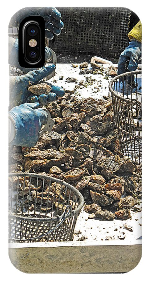 Oysters IPhone X / XS Case featuring the photograph Culling Oysters by Barbara McDevitt