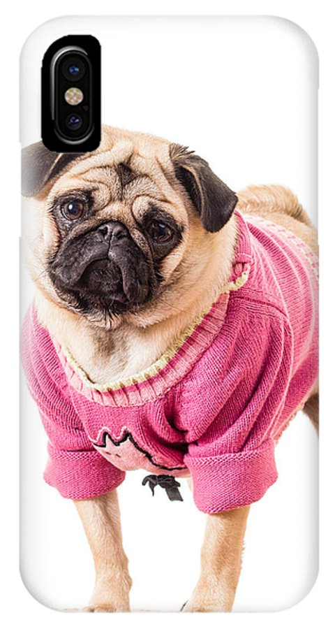 Dressed IPhone X Case featuring the photograph Cute Pug Wearing Sweater by Edward Fielding