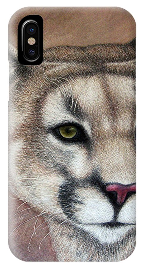 Cougar IPhone X Case featuring the drawing Cy by Jo Prevost