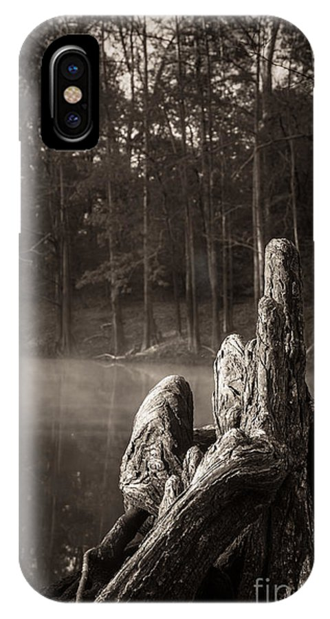 Cypress Knees IPhone X Case featuring the photograph Cypress Knees In Sepia by Imagery by Charly