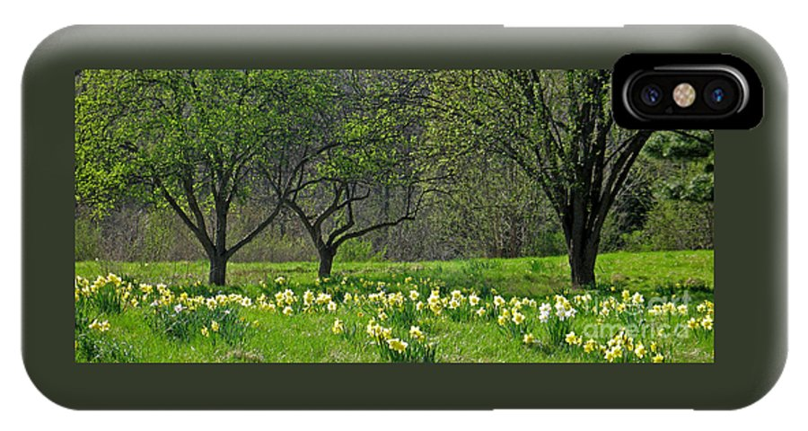 Spring IPhone X Case featuring the photograph Daffodil Meadow by Ann Horn