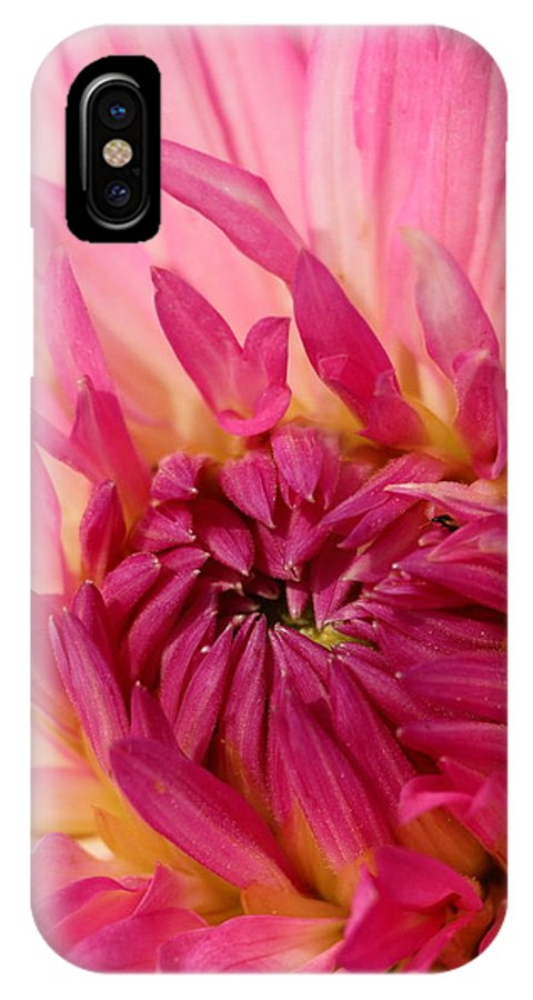 Flower IPhone X Case featuring the photograph Dahlia 2am-104251 by Andrew McInnes