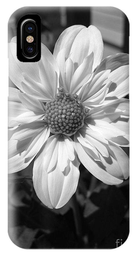 Dahlia IPhone X Case featuring the photograph Dahlia Named Alpen Cherub by J McCombie