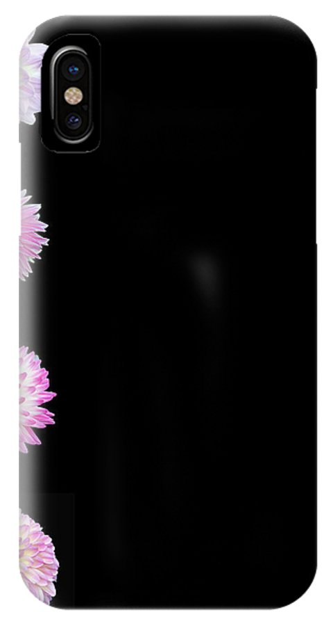 Dahlias IPhone X Case featuring the photograph Dahlias On Solid Black by Paul Pecora