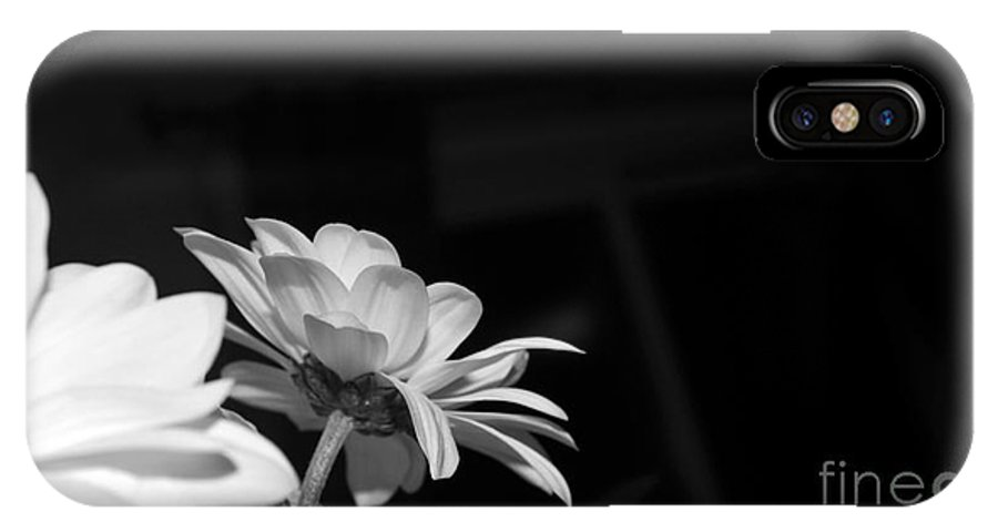 White IPhone X / XS Case featuring the photograph Daisy Bouquet by Elaine Mikkelstrup