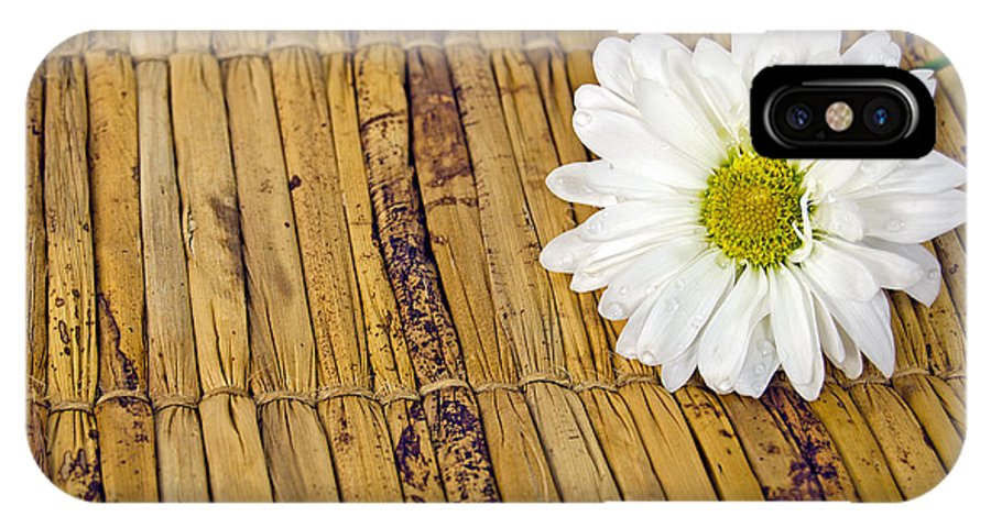 Water IPhone X Case featuring the photograph Daisy On Bamboo by Maria Dryfhout