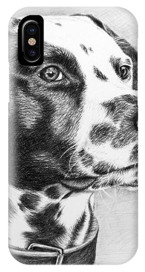 Dog IPhone X Case featuring the drawing Dalmatian Portrait by Nicole Zeug