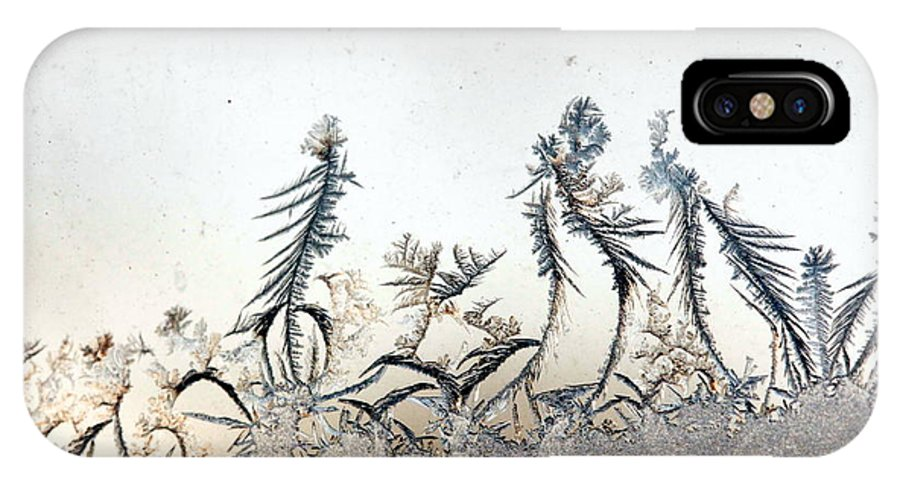 Frost IPhone X Case featuring the photograph Dancing Frost Flowers by Mary Cherry
