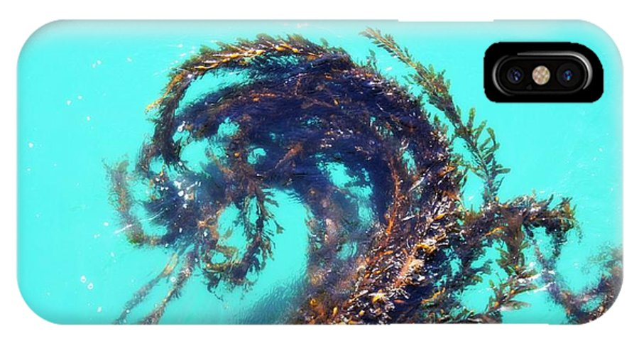 Ocean IPhone X Case featuring the photograph Dancing Kelp by Sharon Johnston