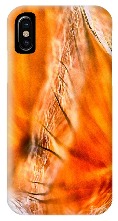 Flower IPhone X Case featuring the painting Dandelion Abstract Paint by Odon Czintos