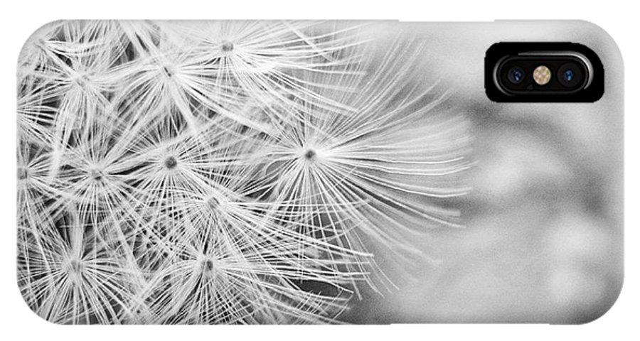 Dandelion IPhone X Case featuring the photograph Dandelion by Jessie Gould