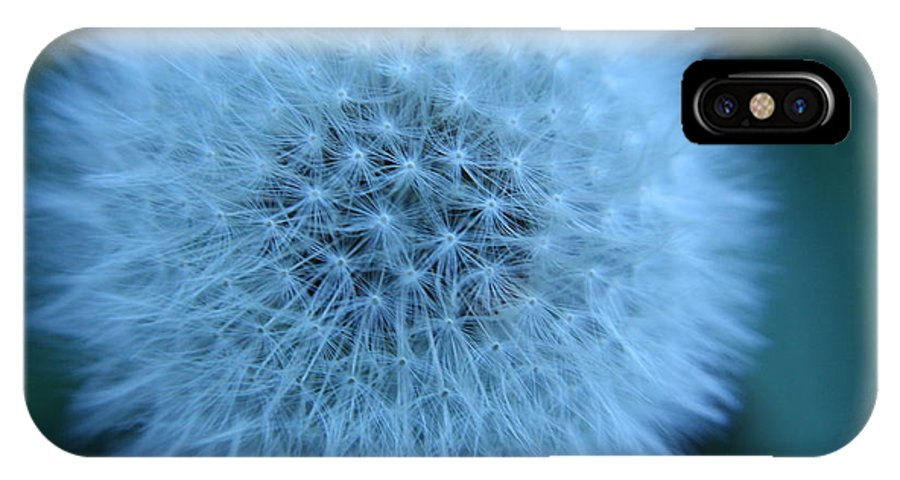 Dandelion IPhone X Case featuring the photograph Dandelion Softness by Teresa Herlinger