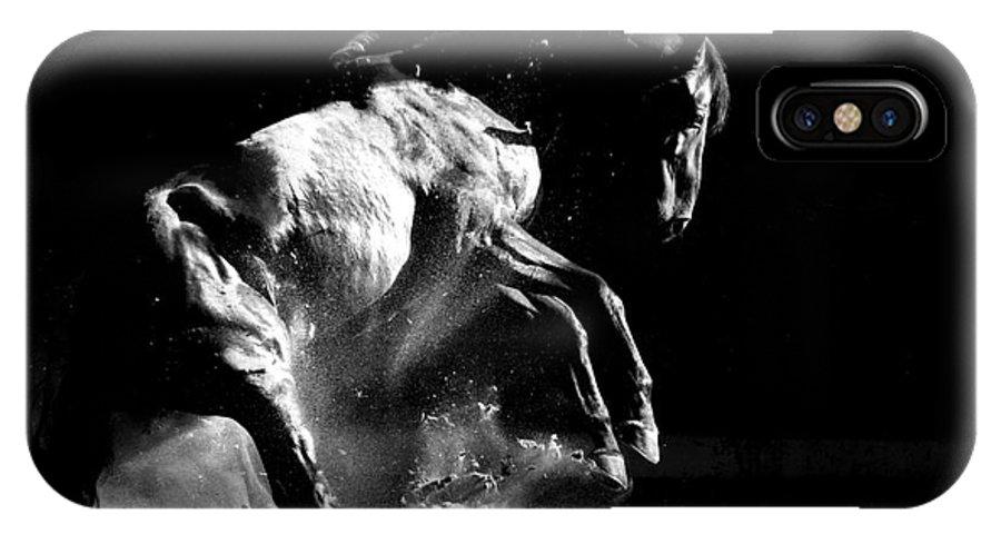 Stallion IPhone X Case featuring the photograph Dark Dance by Carol Walker