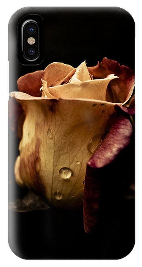 Flowers IPhone X / XS Case featuring the photograph Dark Flower 14 by Grebo Gray