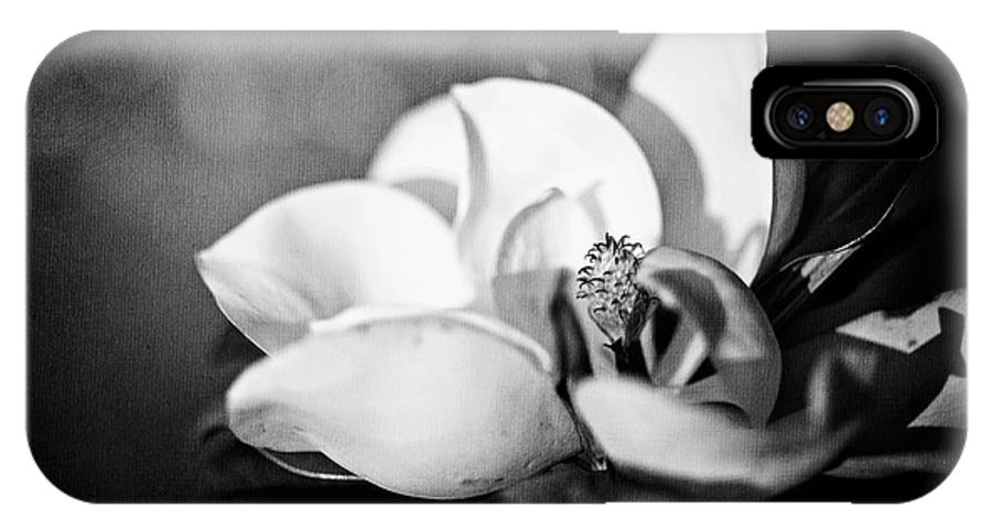 Magnolia IPhone X Case featuring the photograph Dark Magnolia by Ken Gehring