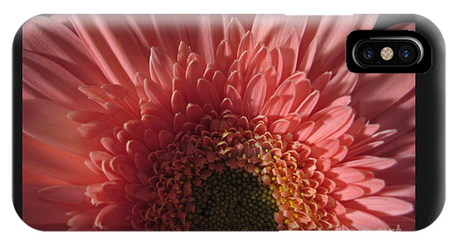 Flower IPhone X Case featuring the photograph Dark Radiance by Ann Horn