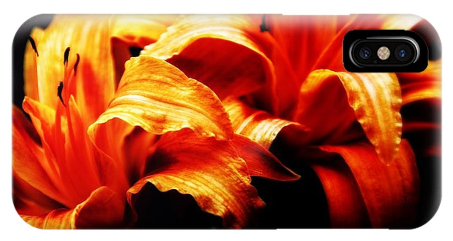 Flowers IPhone X Case featuring the photograph Day Lilies by Brian Druggan