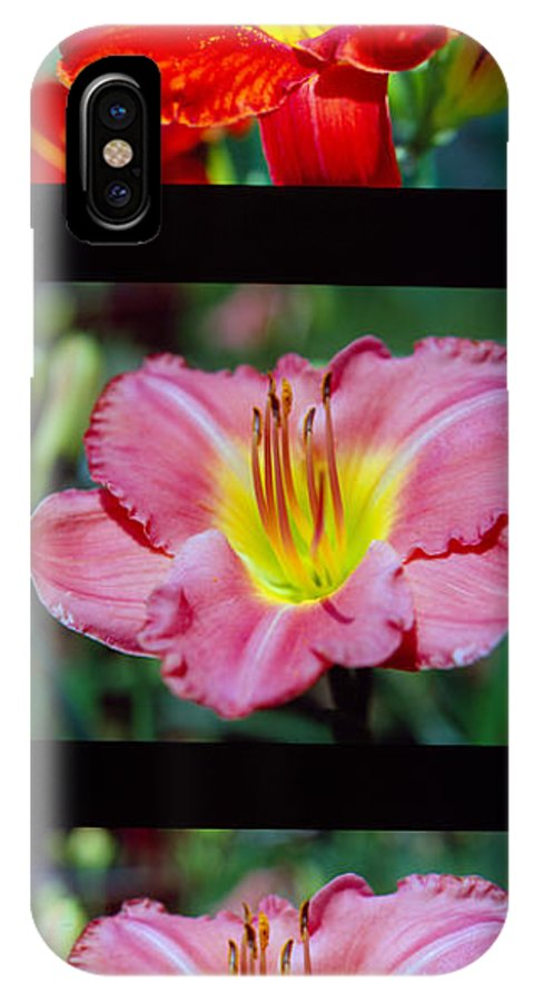 Three IPhone X Case featuring the photograph Day Lilly 01 by George Ferrell