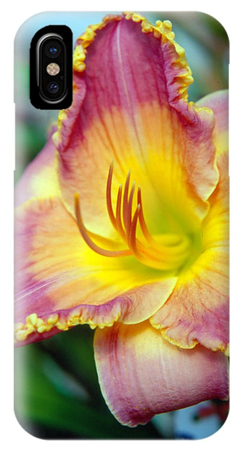 Lilly IPhone X Case featuring the photograph Day Lilly In Bloom by George Ferrell