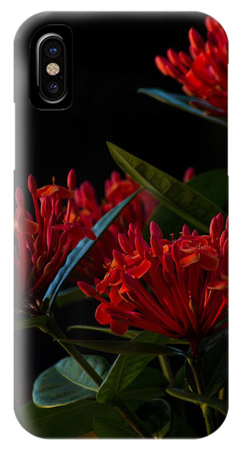 Garden IPhone X Case featuring the photograph Days End by Julie Andel