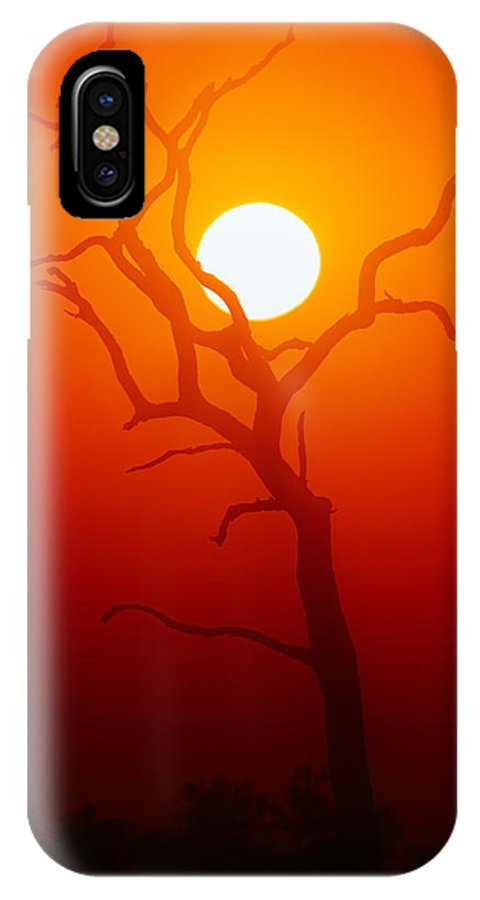 Tree IPhone X Case featuring the photograph Dead Tree Silhouette And Glowing Sun by Johan Swanepoel