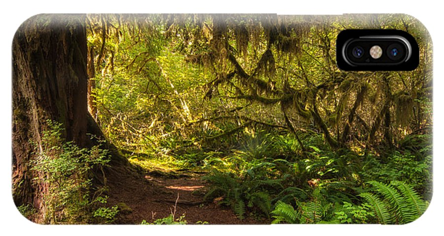 Hoh Rain Forest IPhone X Case featuring the photograph Deep Into The Hoh Rain Forest by Rich Leighton