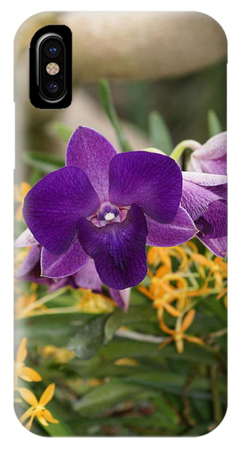 Orchard IPhone X Case featuring the photograph Deep Purple Orchards by Lauren Simon