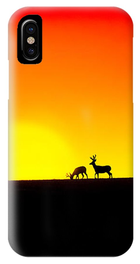 Deer IPhone X Case featuring the photograph Deer In Silhouette by Debi Bishop