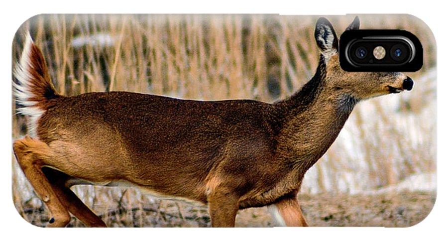 Deer IPhone X Case featuring the photograph Deer Jump by Christy Pollard